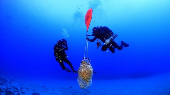 Фото №1 - В Эгейском море найдены следы древнего кораблекрушения