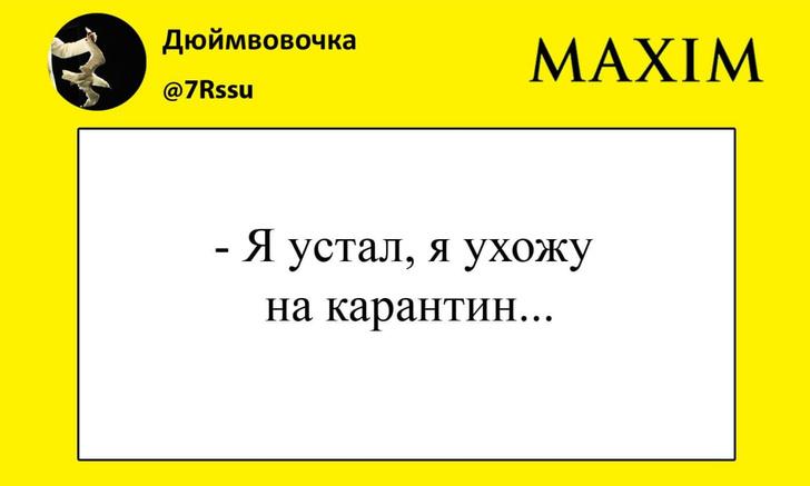 Фото №1 - Лучшие шутки про самоизоляцию Владимира Путина