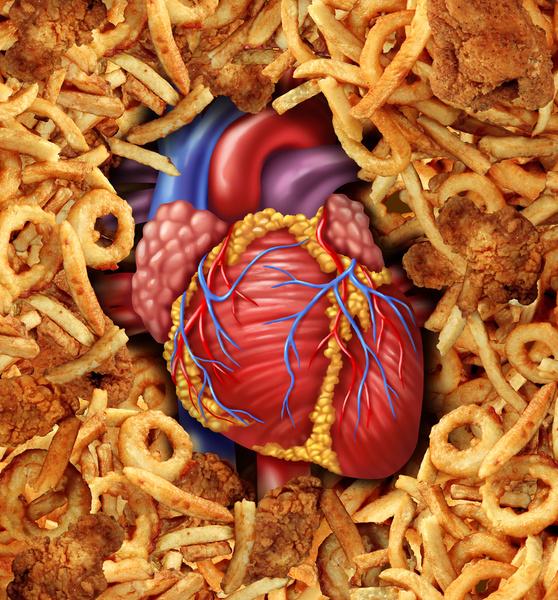 Фото №1 - Высокий холестерин приводит к бесплодию