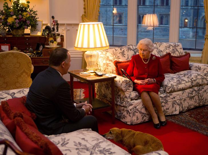 Фото №25 - Елизавета II и ее корги: история главной королевской страсти