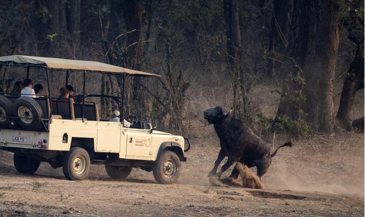 Фото №1 - Один кадр: Замбия