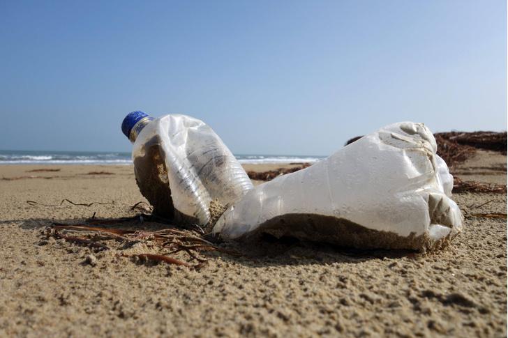 Фото №1 - Ученые создали поедающий пластик фермент
