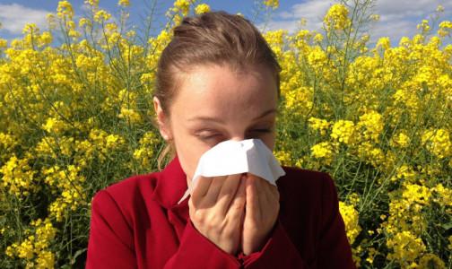 Фото №1 - Сезонная аллергия все ближе. Как пережить весеннее обострение поллиноза - простые правила от Роспотребнадзора