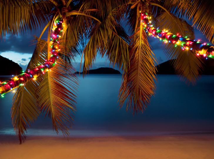Фото №17 - Елки, палки, мандарины: как украшают новогодние деревья в разных странах мира