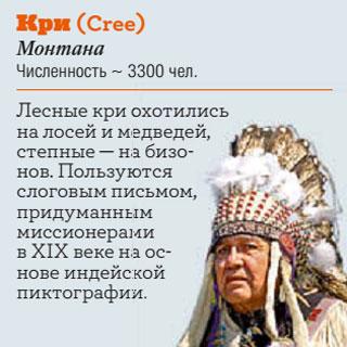 Фото №13 - Американская трагедия: индейцы