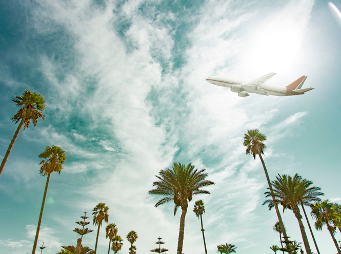 Фото №1 - Когда выгоднее всего покупать авиабилеты?