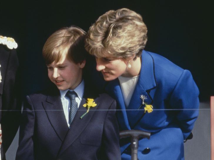 Фото №1 - Главный совет об отношениях, который Диана дала Уильяму (и как он изменил жизнь принца)