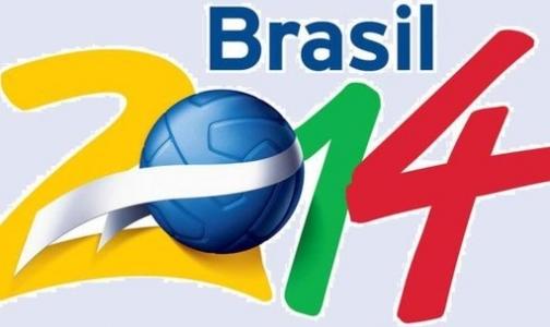 Фото №1 - Власти Бразилии советуют гостям ЧМ по футболу привиться от желтой лихорадки