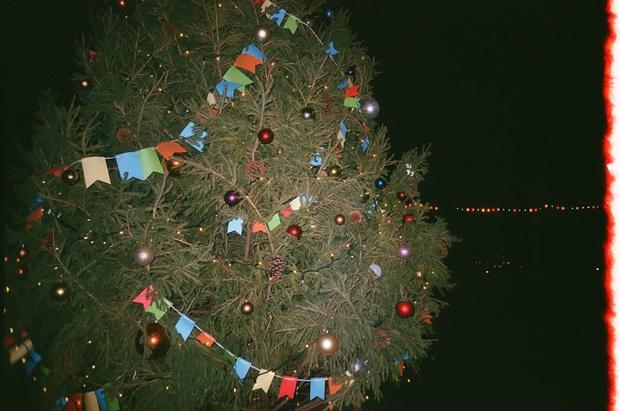 Фото №3 - Новогодний бал ВЭУ 2020 пройдет по мотивам фильма «Один дома»