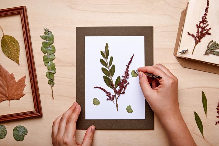 А чтобы листья не завяли и не рассыпались, можно замочить их в глицерине, который продается в аптеке. Либо покрыть ваши заготовки для творчества прозрачным лаком.