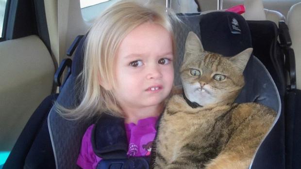 Фото №5 - Лучше фотожабы на кота в защитном воротнике