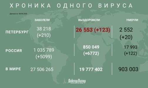 Фото №1 - За сутки коронавирус выявили у более 200 петербуржцев