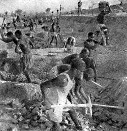 Фото №2 - Наследники древнего Мали