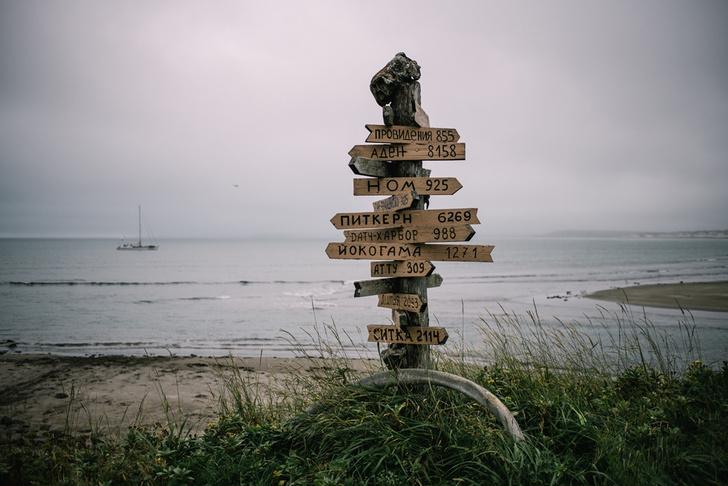 Фото №7 - Командорские острова: край мира или рай на земле?