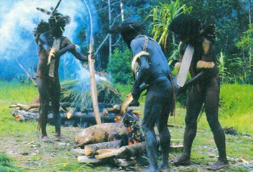Фото №3 - Прощание с первобытным миром, или Путешествие к последним настоящим дикарям Новой Гвинеи