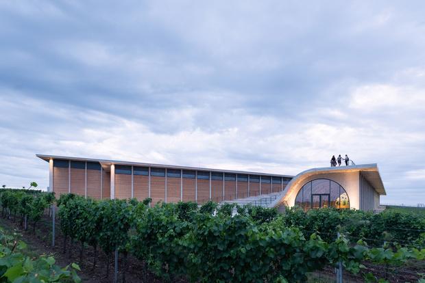 Фото №5 - Винодельня со смотровой площадкой на крыше в Чехии