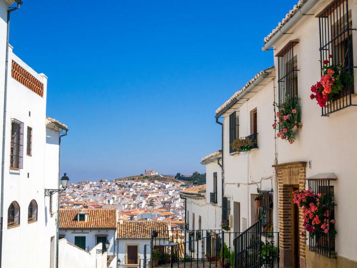 Фото №24 - Пламенное сердце Испании: гид по Андалусии. Часть 2