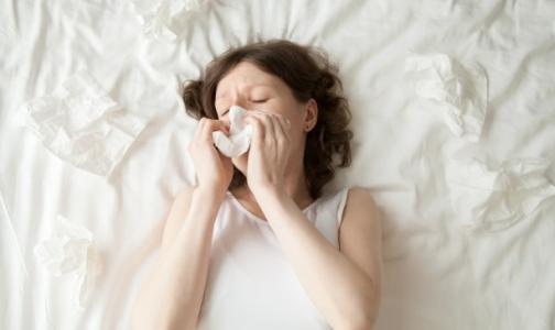 Фото №1 - В начале года грипп и ОРВИ уложили на больничную койку около двух сотен петербуржцев