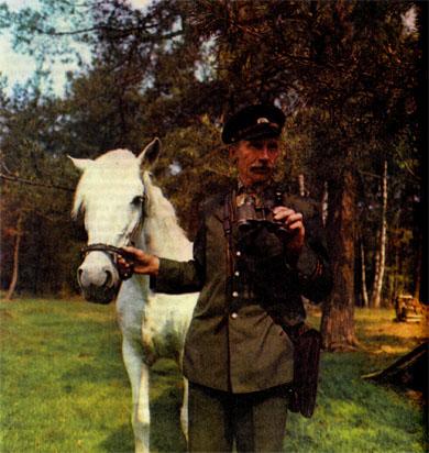 Фото №2 - Гринис осоково-вересковый