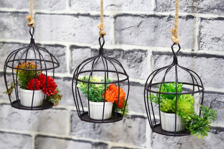 Фото №2 - Травы, овощи, цветы: как устроить мини-сад на балконе