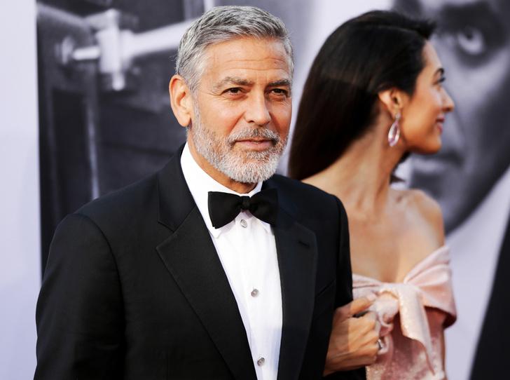 Фото №1 - Самые любопытные факты из впечатляющей биографии Джорджа Клуни