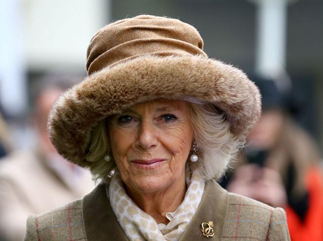 Фото №4 - Какие изменения ждут королевскую семью Британии в 2019 году