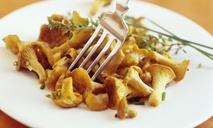 Рецепты блюд из лисичек в мультиварке
