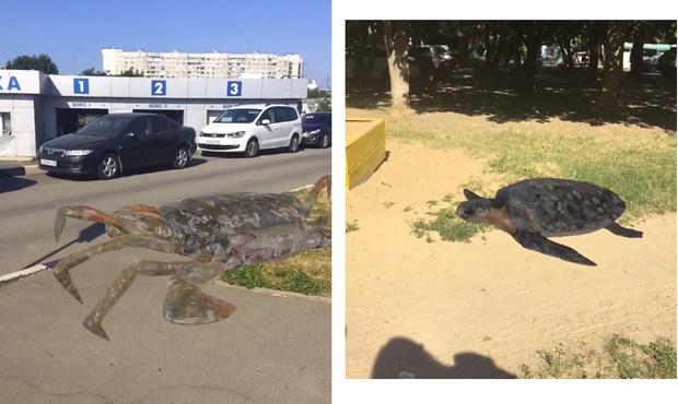 Фото №1 - Приложение дня: Создай динозавра на улицах своего города с помощью дополнительной реальности