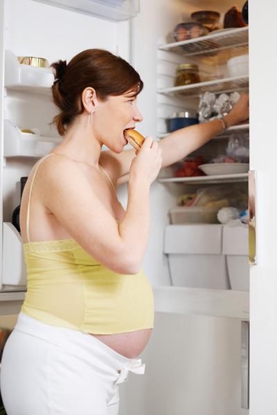 Фото №1 - Как выбрать холодильник?