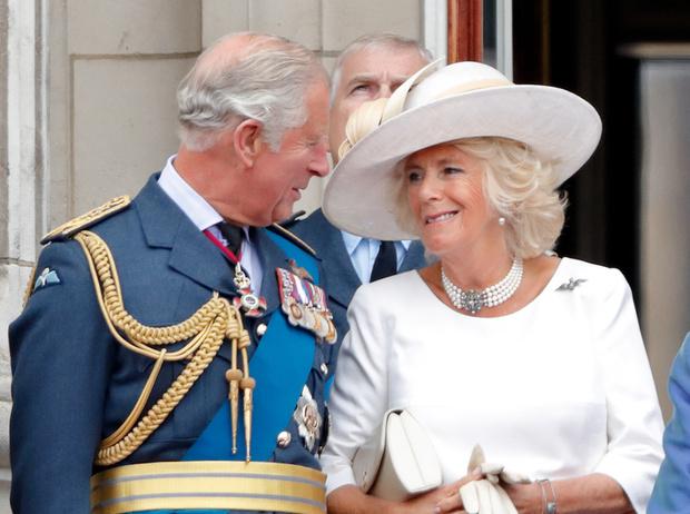 Фото №3 - Почему герцогиня Камилла никогда не хотела быть принцессой Уэльской
