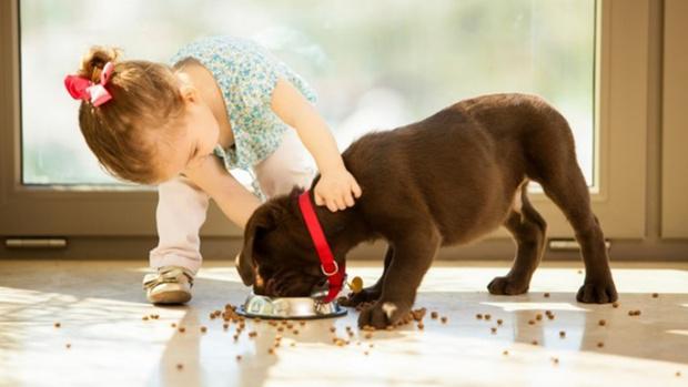 Фото №1 - Купите ребенку собаку! Опыт одной мамы