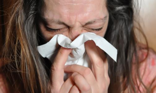 Фото №1 - У петербуржцев выявляют ОРВИ без гриппа: риновирусы, парагрипп и аденовирусы