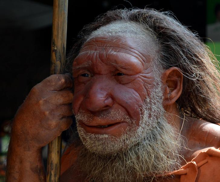 Фото №1 - Названа неожиданная причина вымирания неандертальцев
