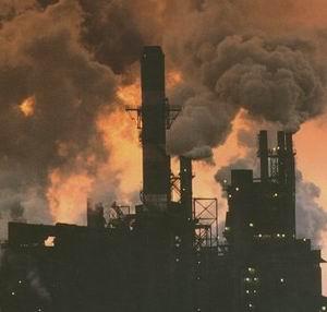 Фото №1 - Плохая экология ответственна за 40% смертей