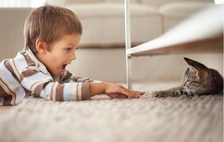 Фото №1 - «Мам, хочу собаку!» 7 веских причин завести ребенку питомца
