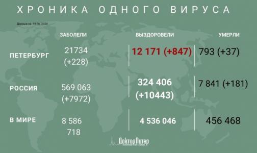Фото №1 - За сутки в России выявлено 7 972 новых случая заражения коронавирусом