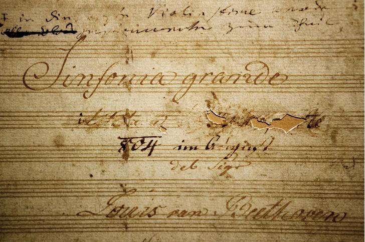 Фото №3 - Бетховенский минимум: 5 фактов о Бетховене, которые должен знать каждый