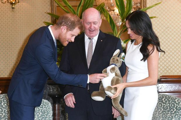 Фото №1 - Зачем ребенку Меган Маркл и принца Гарри подарили чучело муравьеда?