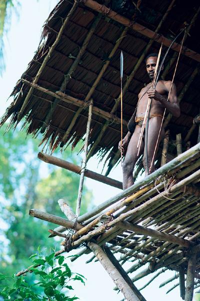 Фото №8 - Высшее общество: индонезийское племя короваи
