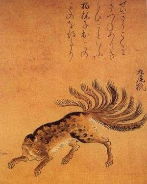 Фото №4 - Китайская лисичка — совсем не сестричка