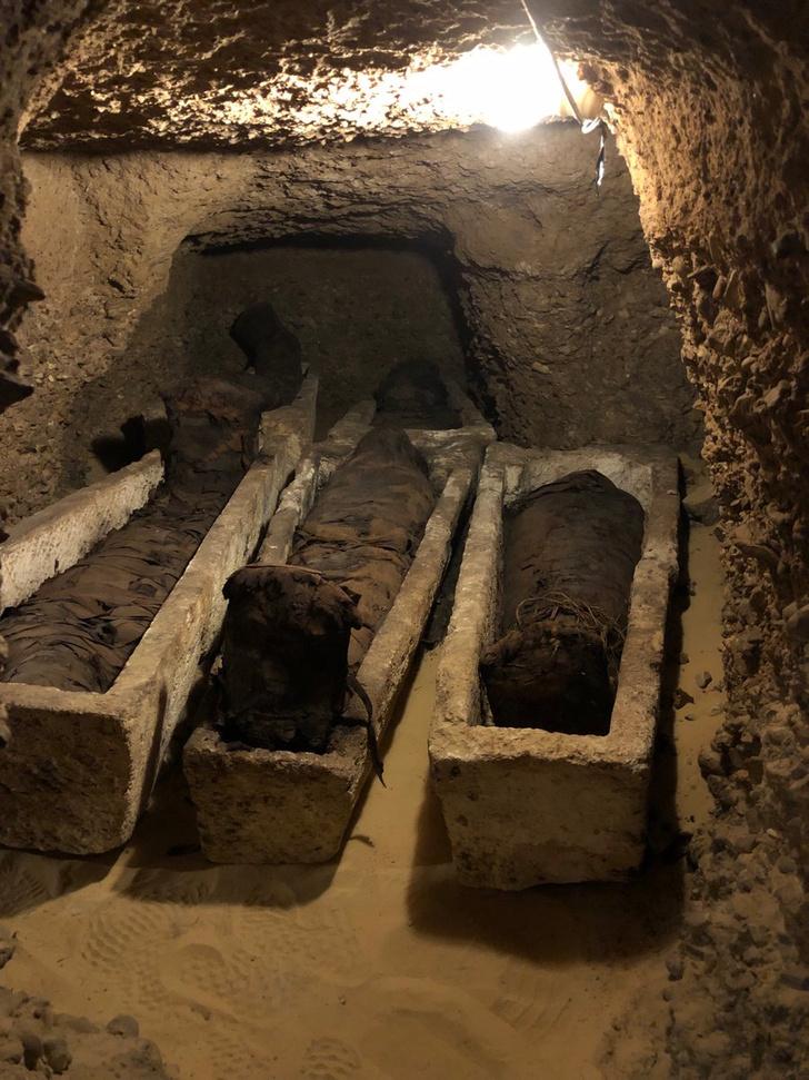 Фото №1 - В Египте обнаружили некрополь с десятками мумий
