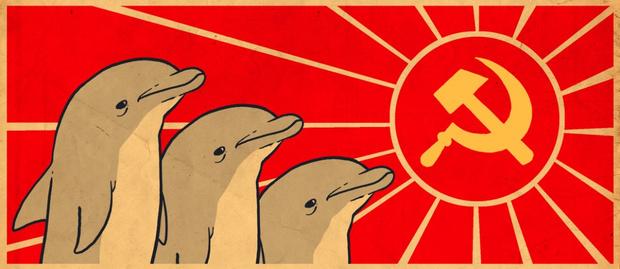 Фото №1 - Советско-иранские боевые дельфины взбудоражили Интернет