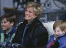 Один секрет на троих: любимое тайное развлечение Дианы, Гарри и Уильяма