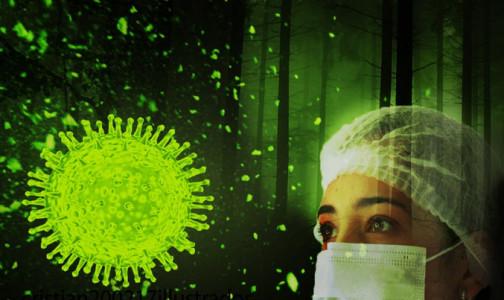 Фото №1 - Роспотребнадзор: ВРФ прочитаны полные геномы 1315 изолятов нового коронавируса