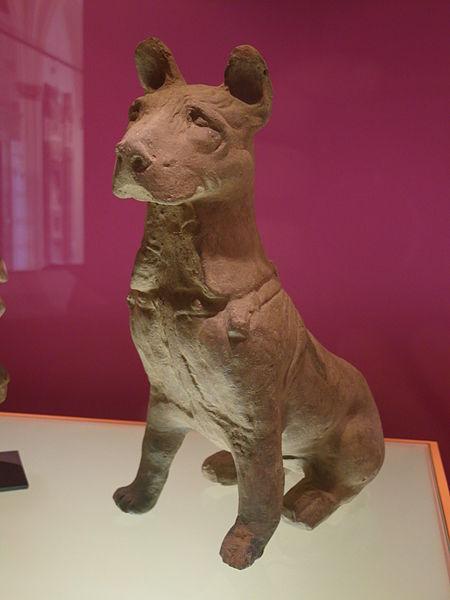 Фото №1 - Ученые выяснили, зачем китайцы в древности ели собак