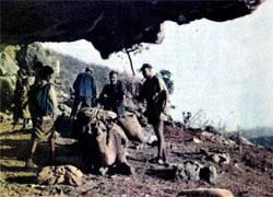 Фото №4 - В горах Дофара гремят выстрелы