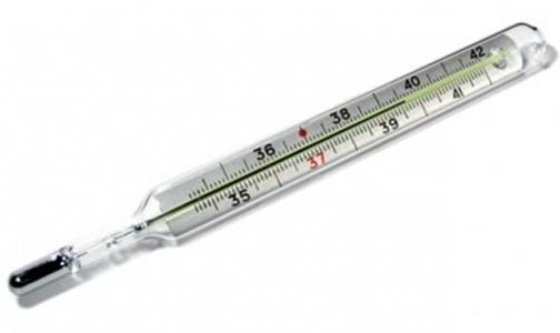 Фото №1 - Что делать, если разбился ртутный градусник