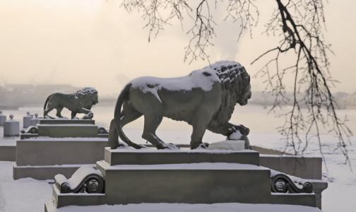Фото №1 - Без горячей ванны и алкоголя. Петербургский врач рассказал, как отогреть переохладившихся