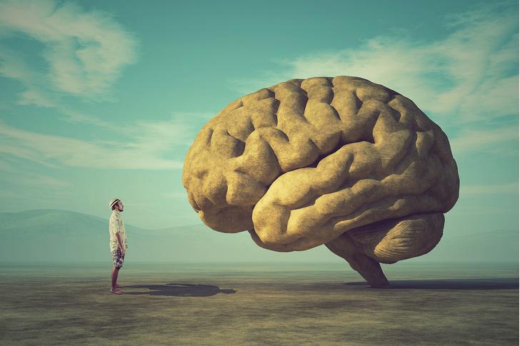 Фото №1 - 7 суперспособностей человеческого мозга, о которых ты не подозревал
