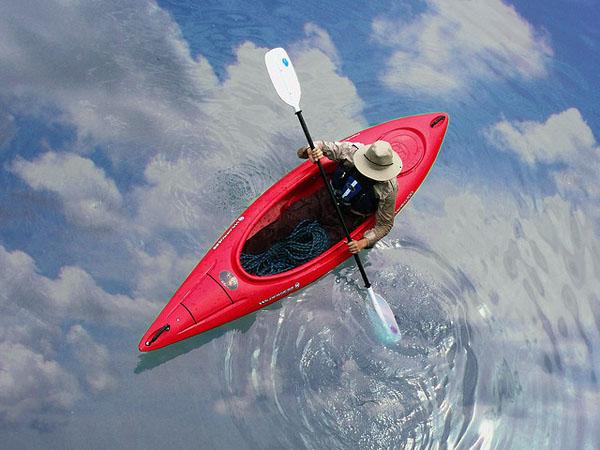 Фото №1 - Земная асимметрия из космического сепаратора